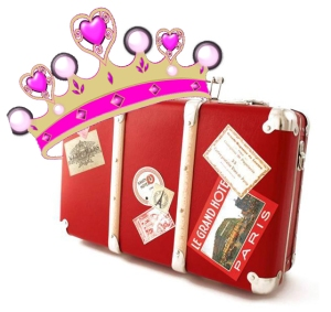 princess luggage